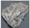 02-Magnesium-carbonicum